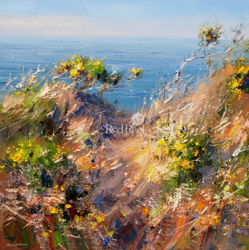 Rex PRESTON - Afternoon Sunlight, Cornish Cliffs