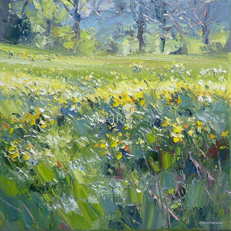 Rex PRESTON - Field of Daffodils