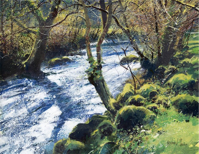 Richard Thorn - Spring River