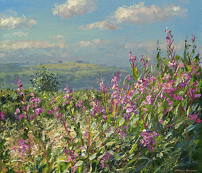 Limited Edition Prints Artist Mark Preston - September Willowherb
