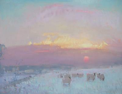 British Artist Stephen BROWN - Sheep at Sunset