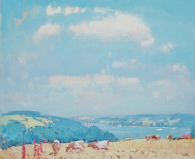 Stephen BROWN RBA - Salcombe Estuary