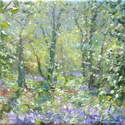 British Artist Mark PRESTON - Sunlit Bluebells