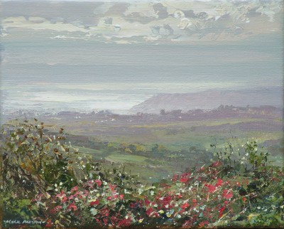 Mark PRESTON - Sunlit Fuchsia, towards Newlyn