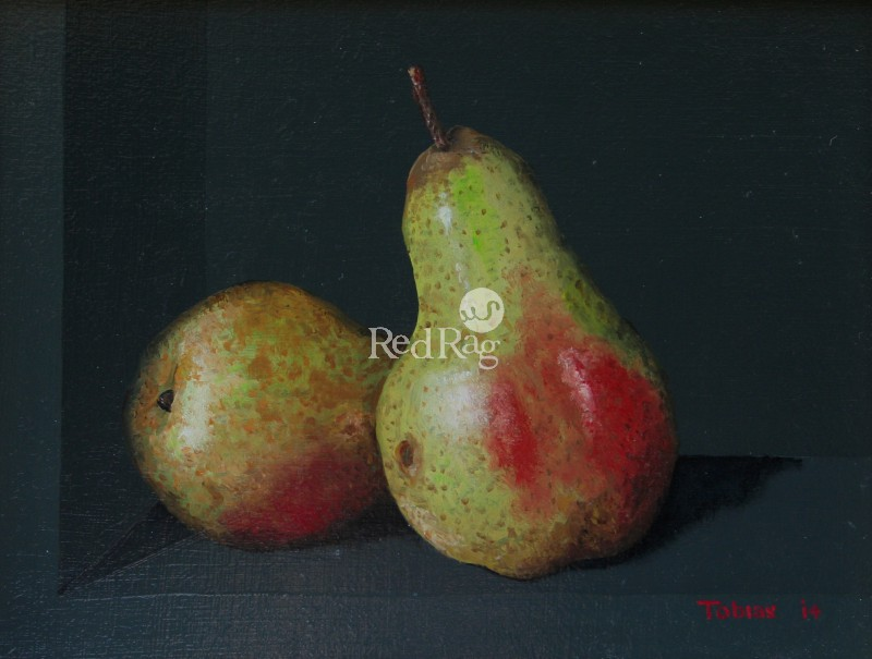 Tobias HARRISON - A Pair of Pears
