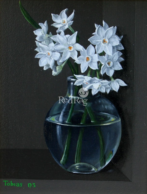 Tobias HARRISON - Narcissi in a Jar