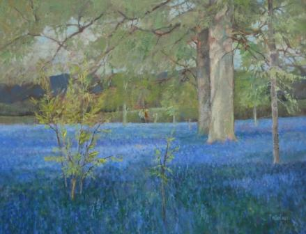 British Artist Tom WANLESS - A Carpet of Bluebells