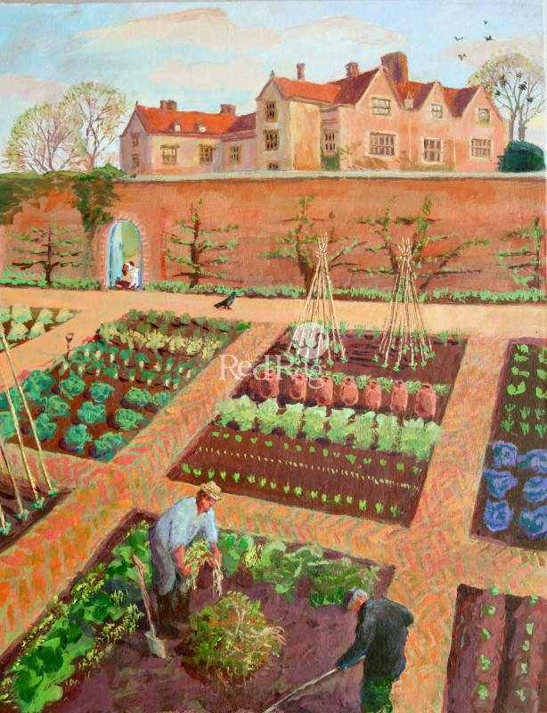 Vivienne LUXTON - In the Walled Garden