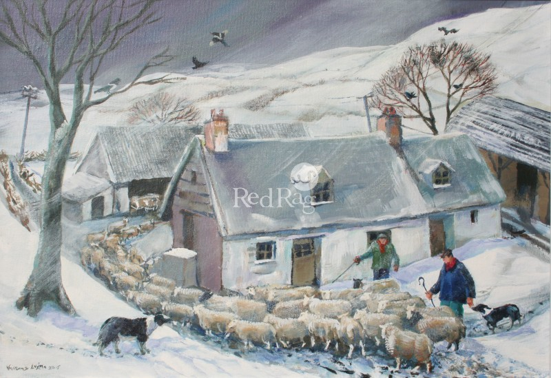Vivienne LUXTON - Bringing in the Sheep