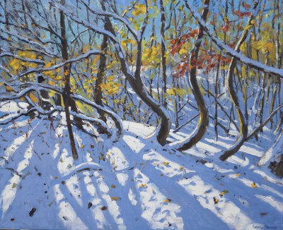 British Artist Andrew MACARA  - Curved Trees, Allestree Wood, Derbyshire