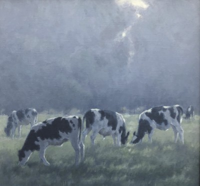 Ann HEAT RBA - Young Cattle