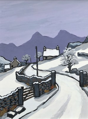 David BARNES - Across to Snowdonia