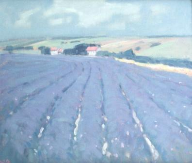 Stephen BROWN RBA - Lavender at Snowshill, Gloucestershire